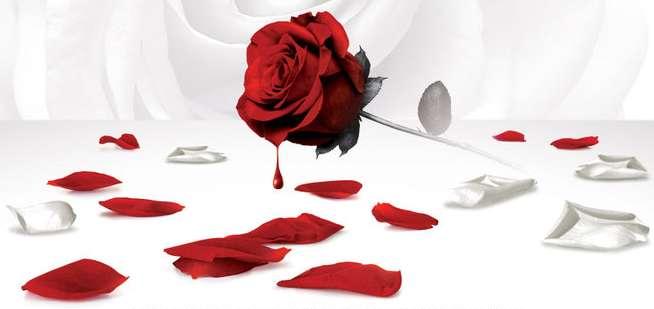Kamel Ouali - Dracula : l'amour plus fort que la mort - le 30 septembre 2011 à Paris
